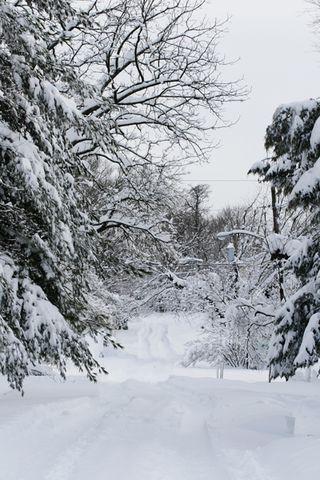 Snowpocalypse09